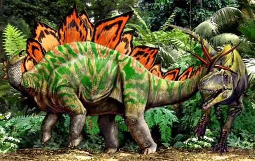 https://luisvrey.files.wordpress.com/2012/06/stegosaurus11.jpg?resize=500%2C316