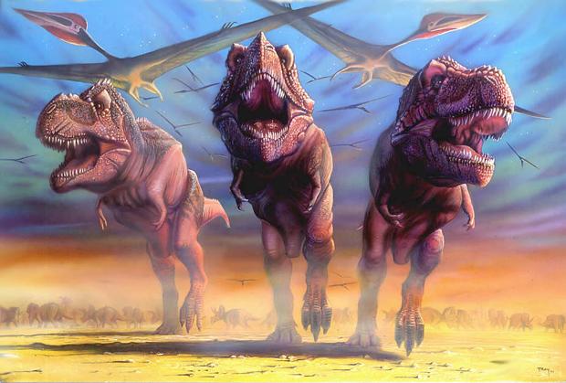 Wankel's T.rex2