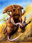 Protoceratops vs Velociraptor copy