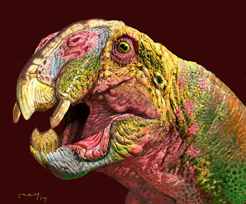 Dynodont portrait B