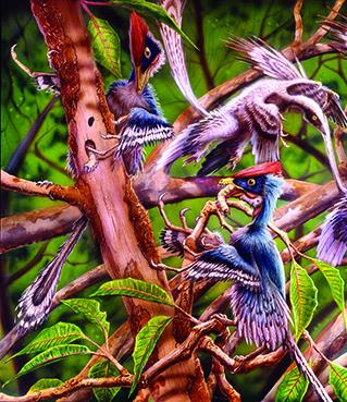 epidendrosaurus.jpg