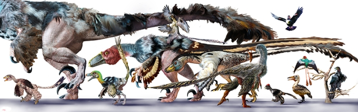 Raptor FamilyFINALB
