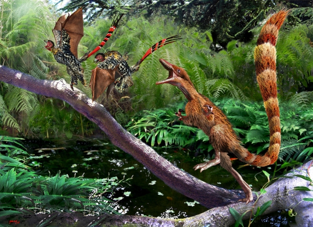 Yi Qi and Sinosauropteryx New copy
